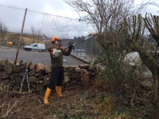 Steve chopping trees